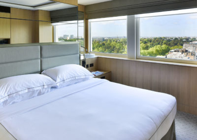 Luxury Suite with a view London's skyline
