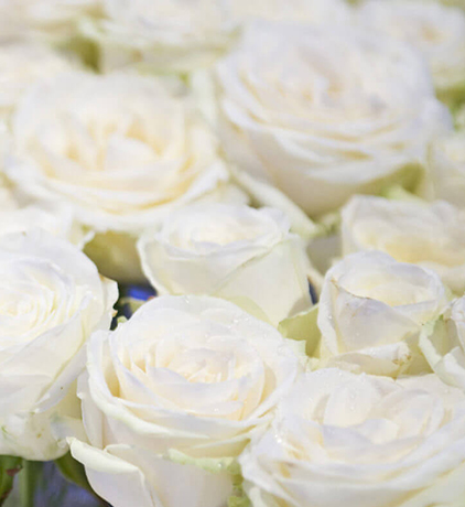 Wedding Venues Central London